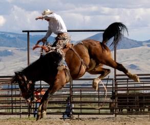 120531-2. 1. The Cowboy