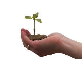 How to Develop a B2B Lead Nurturing Program that Really Works